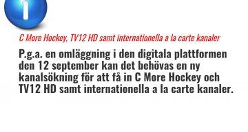 Arbete på den digitala plattformen den 12 september